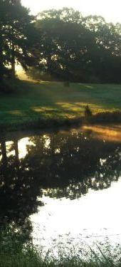 Selmer pond