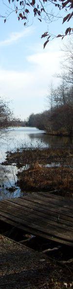 Selmer, Tennessee lake