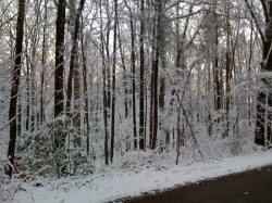 Snow in April near my home in Tennessee